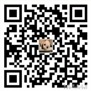 QQ图片20170810110814_meitu_2